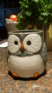 For all my tea junkies-this is my new tea mug! Isn't it cute!